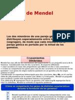 2da Ley de Mendel