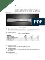 Final Report (2)