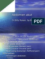 230418618-Abdomen-Akut.ppt