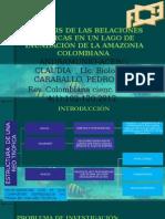 Analisis Articulo Redes Troficas en Lago de La Amazonia Copia Deforme