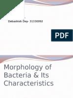Morphology of Bacteria & Its Characteristics