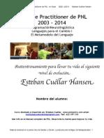 Metamodelo Del Lenguaje PDF