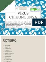 Seminário Chikungunya