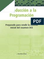 Introduccion a La Programacion 2005