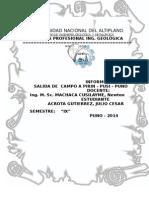 INFORME DE PIRIN 2014.docx