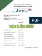 analisis del codigo municipal.originals.doc
