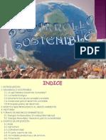 104204931-Desarrollo-Sostenible