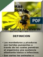 Proc S 15 Picaduras Mordeduras