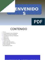 DIAPOSITIVAS GOBIERNO CORPORATIVO.pptx