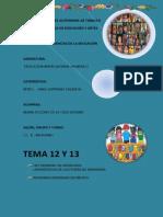 TEMA 12 y 13