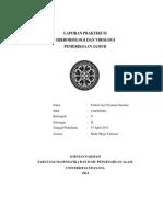 pemeriksaan jamur.pdf