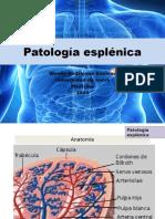 Patología Esplénica