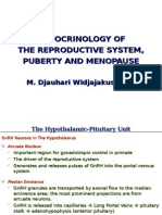 Repro Sys Puberty 2012, Concise