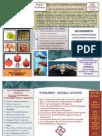 FFIAD Export Training Broucher.pdf