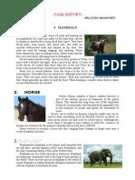 Descriptive mammals
