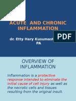 2.Acute & Chronic Inflammation, S1