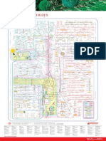 Metabolic Pathways Poster
