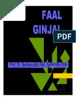 Gus156 Slide Faal Ginjal