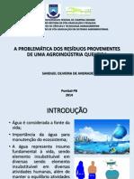 APRESENTAÇÃO - SEMINÁRIO ANIELSON