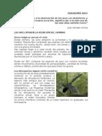 Taxonomía Aves