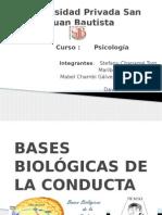 Bases Biológicas de La Conducta