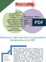 LITIGIOS EMBLEMATIOS Y CONCLUSIONES KARINA.pptx