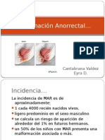 malformacinanorrectal-120608160131-phpapp02
