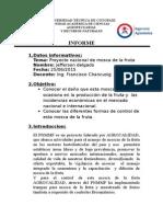 Delgado Sanchez Jefferson Jose Informe de Mosca de La Fruta