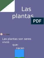 APUNTE_2_PARTES_DE_LAS_PLANTAS_14590_20150416_20140429_124432