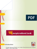 Corporate Governance of PNB Bank