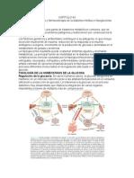CAPÍTULO 43 Páncreas Endocrino y Farmacoterapia