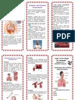 Triptico- Cuidaddos Del Sistema-Respiratorio