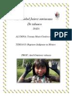 tema#13 pdf