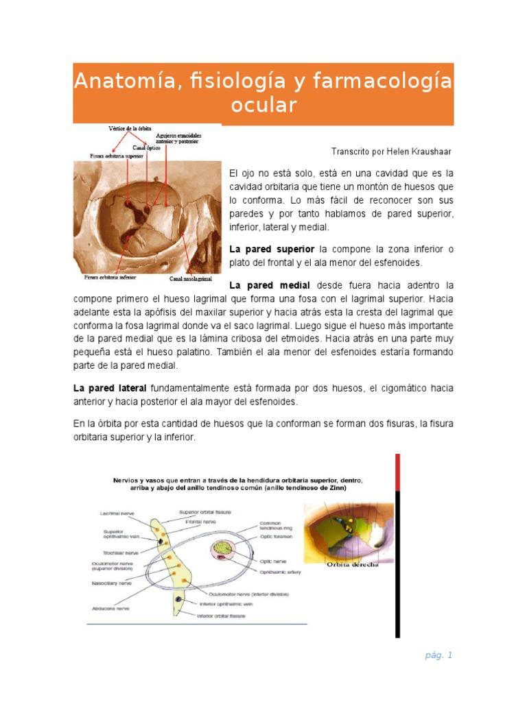 1. Anatomía, Fisiología y Farmacología Ocular