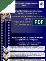 tema#17 pdf