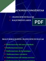 malformaciones_congenitas