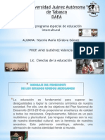 tema#20 pdf