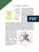 Embriología Clase II