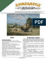 Chrząszcz - Lipiec 2015 (Nr 112)