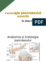 Curs Patologia Pancreasului 2013 2014 Extensie 2015