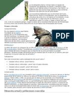 La Investigadora Fanny Cornejo Lidera El Equipo de Yunkawasi Que Defiende Con Pasión y Estudios a Esta Especie Cuyo Hábitat Está en Amazonas y San Martín