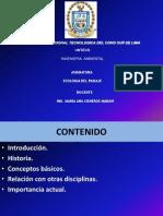 Clase 01 E PAISAJE M.cisneros