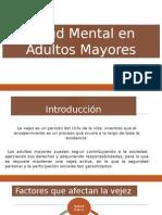 Salud Mental en Adultos Mayores