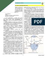 Cap 28 - Farmacologia Do TGI