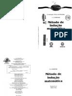 Metodo de Indução Matematica - Sominski