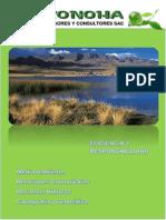 Brochure Konoha
