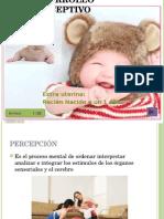 desarrollo_ del RN.pptx