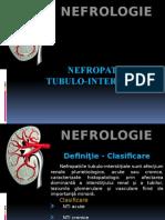 Nefropatiile Tubulo- Interstitiale