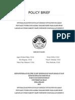 Policy Brief k3