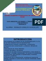 Guia de Mnejo y Trans de Conc Minerales